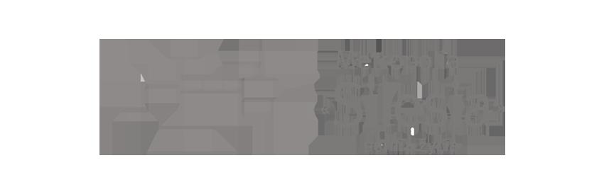 Logo Metropolia Silesia mono