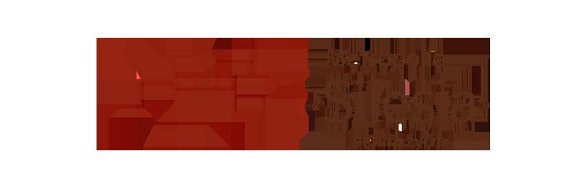 Logo Metropolia Silesia