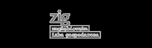 Logo ZIG mono